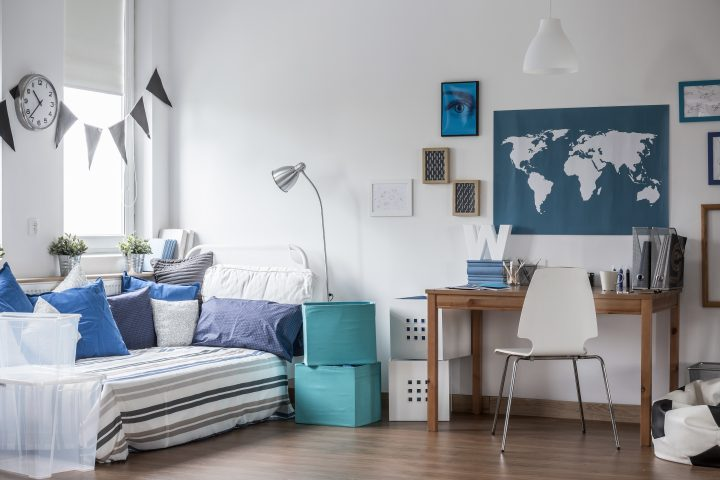 Contemporary Apartment Decor on a Student's Budget
